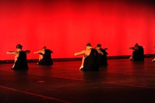 Danse classique pour enfants et adultes danse passion for Cours de danse classique pour adulte