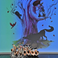 Contes-Creation2019-05
